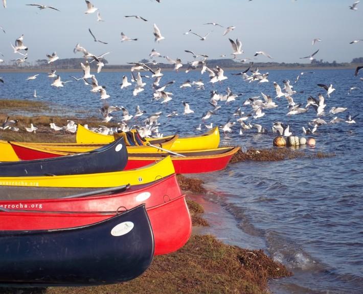 Canoeing in Uruguay