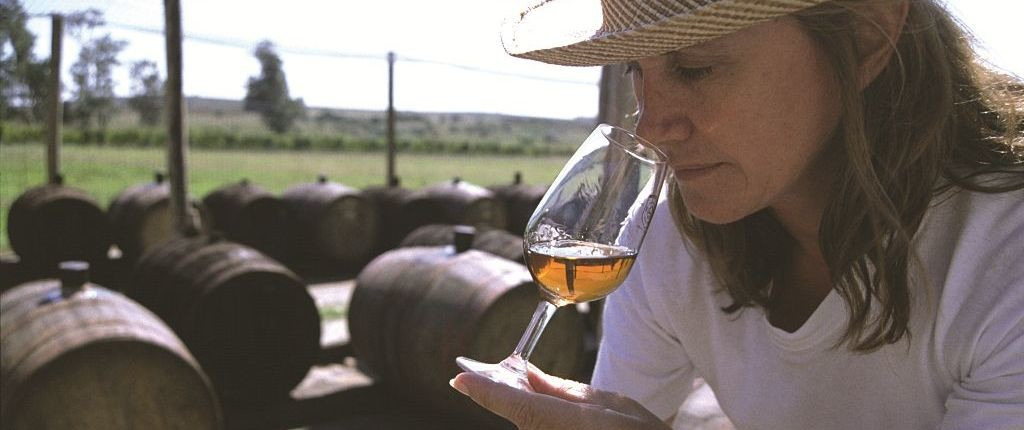 Wine tasting - Wine and Culinary Tours in Uruguay
